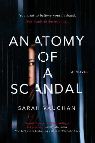 Review of Anatomy of a Scandal
