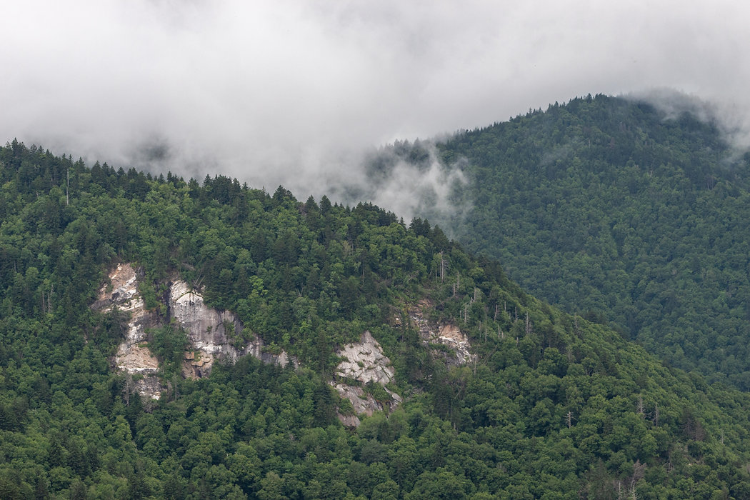 Stephen Wenzel Photography - Smoky Mountains