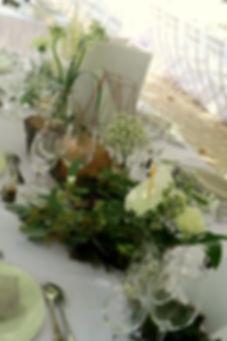 table zoom.JPG