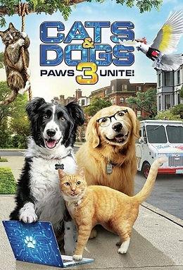 cats&dogs.jpg