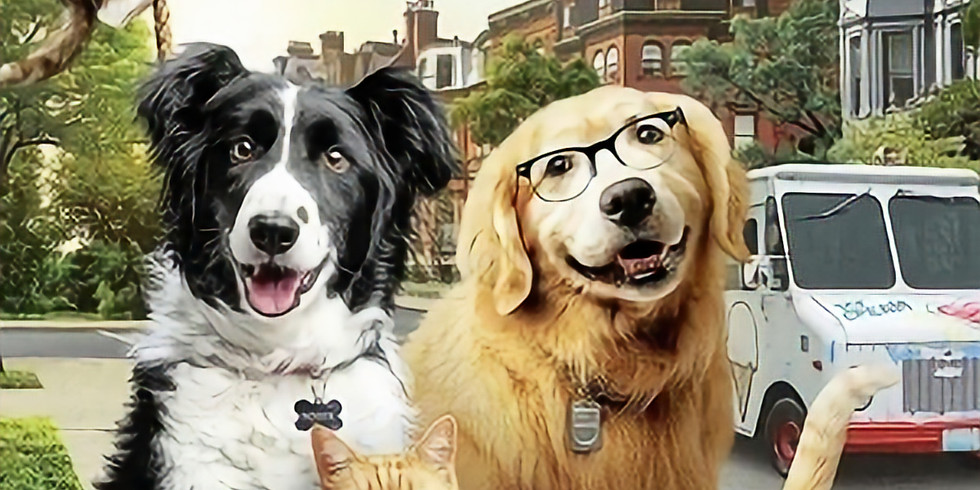 Cats & Dogs 3- Paw Unite Starts