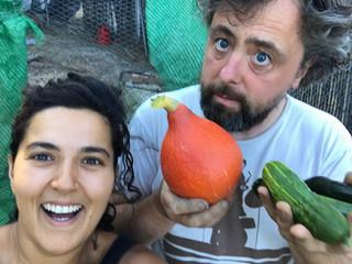 ירקות אורגניים טריים מהאדמה בספרד