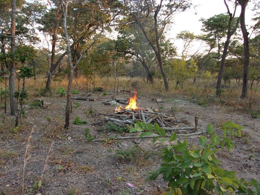 Burning a poachers camp