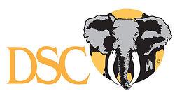 DSC-logo-wAlpha2-e1446594748733.jpg