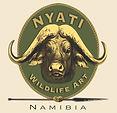 NYATI Logo HIGH RES copy.jpg