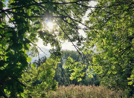 Abschied vom Sommer - eine Radtour am Pätzer Vordersee in Brandenburg