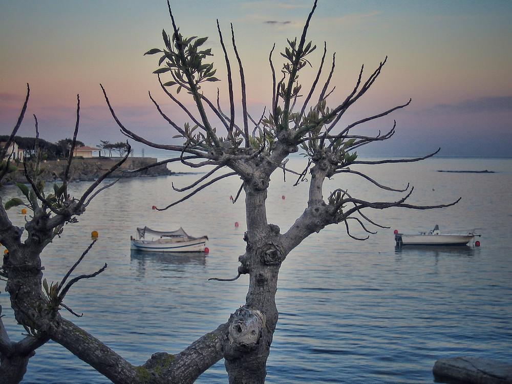 Cadaques Bucht Bay Abendstimmung