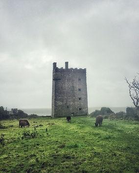 Carrigaholt Castle, Lars Hauck