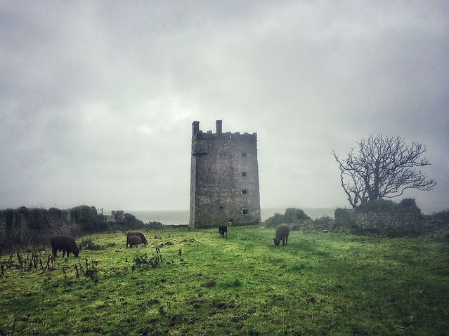 Carrigaholt Castle, County Clare, Irland, Lars Hauck