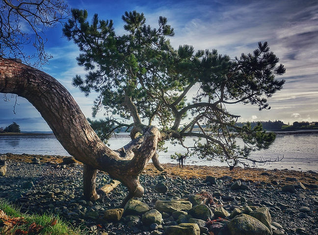 Nordirland, Reagh Island, Road Trip, Lars Hauck