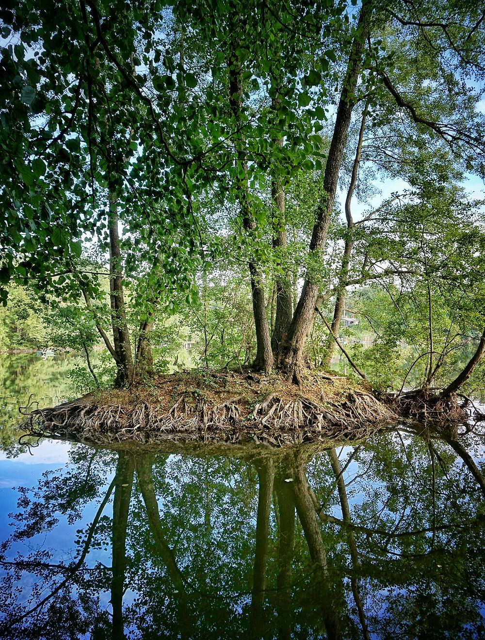 Bestensee Kiessee Waldsee Lake kleine Insel Idylle