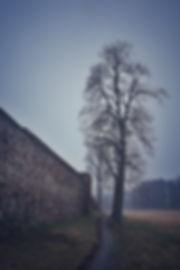 20180331_1847_Polen_Osno_Lubuskie_Stadtm