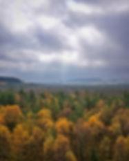 Schwarzes Moor 4 web.jpg