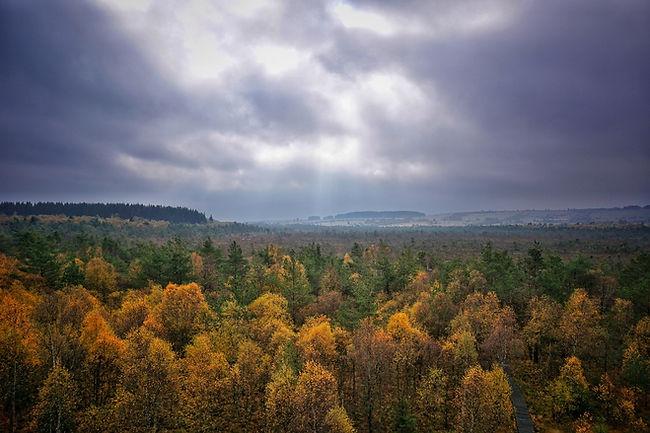 Schwarzes Moor, Rhön, Lars Hauck