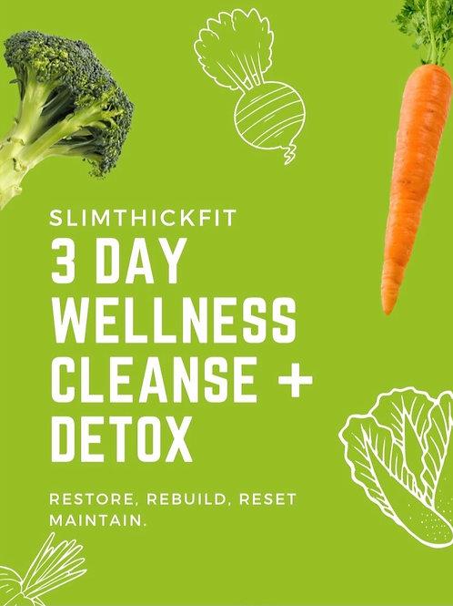 3 Day Wellness Cleanse & Detox