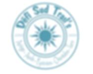 logo defi turquoise.png