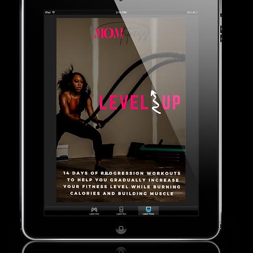 Level Up E-program