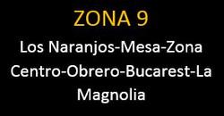 ZONA 9