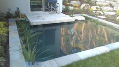 water028.jpg
