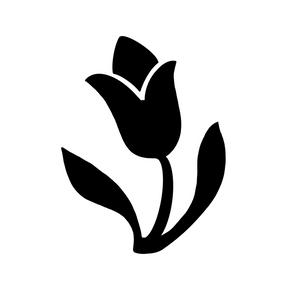 Tulip B & W