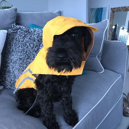 Chillie rain coat.jpg