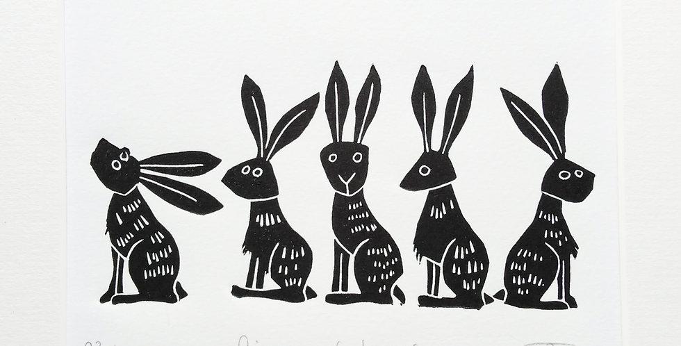 Line of Hares ii
