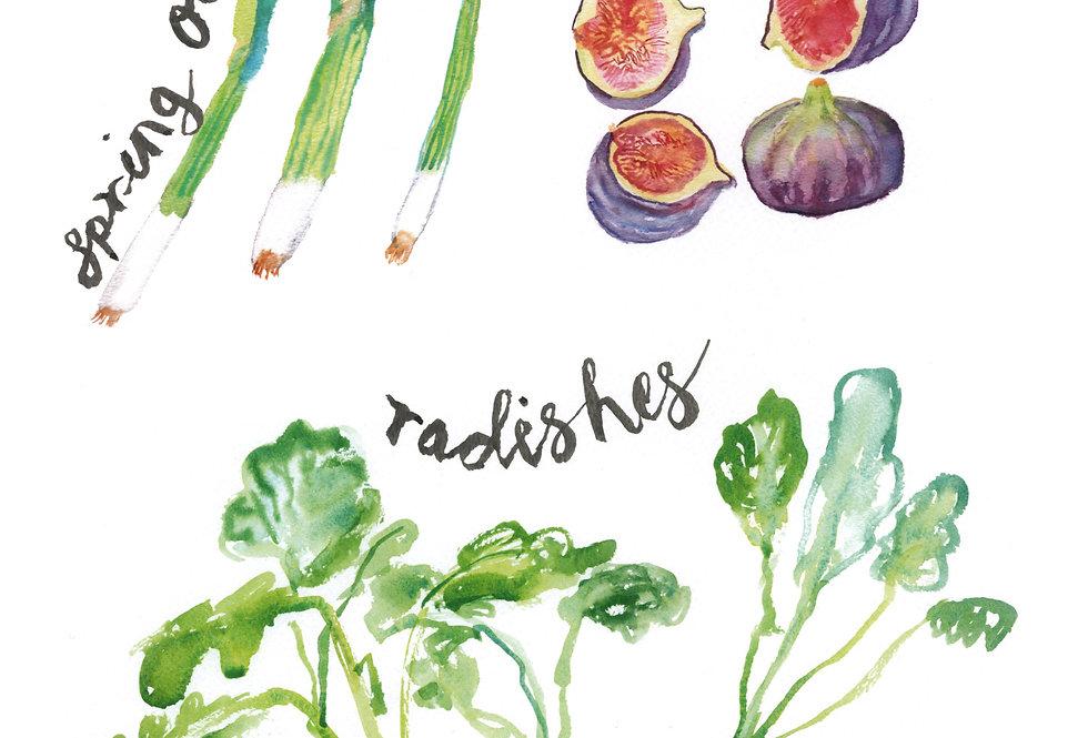 Fresh Food Print