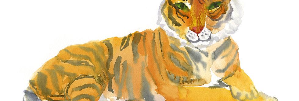 Party Tiger Print