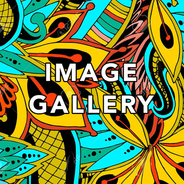 image gallery.png