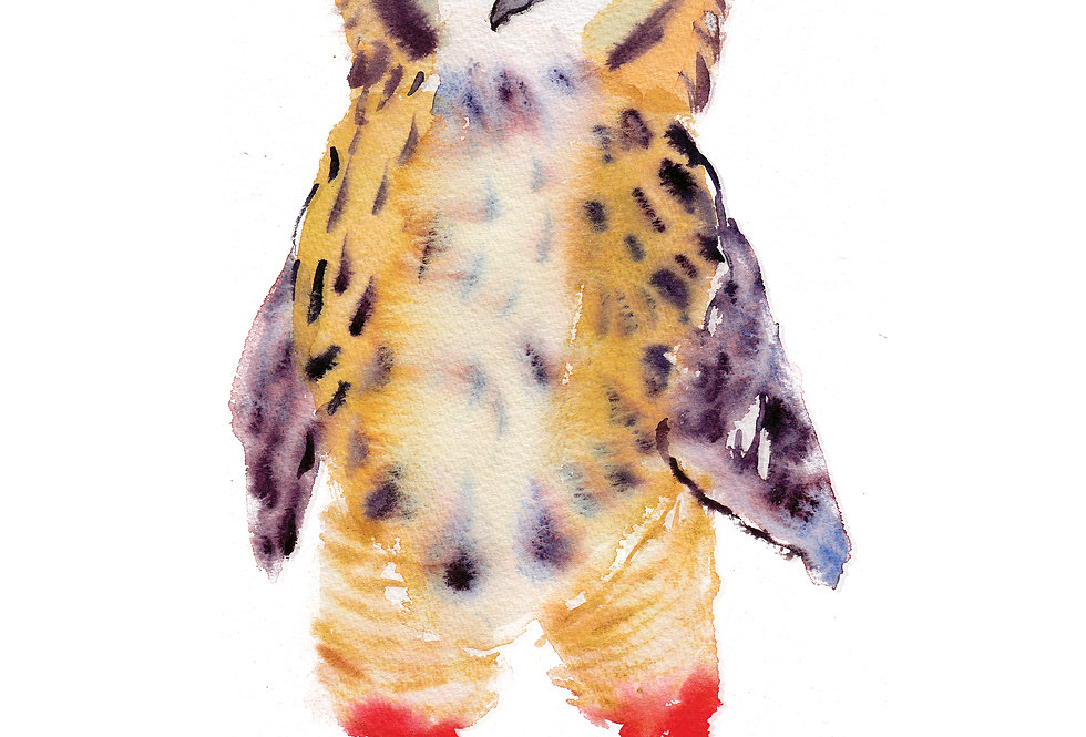Owl in Boots card