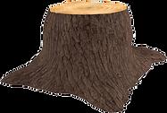 92-929835_3d-tree-trunk-tree-stump-trans