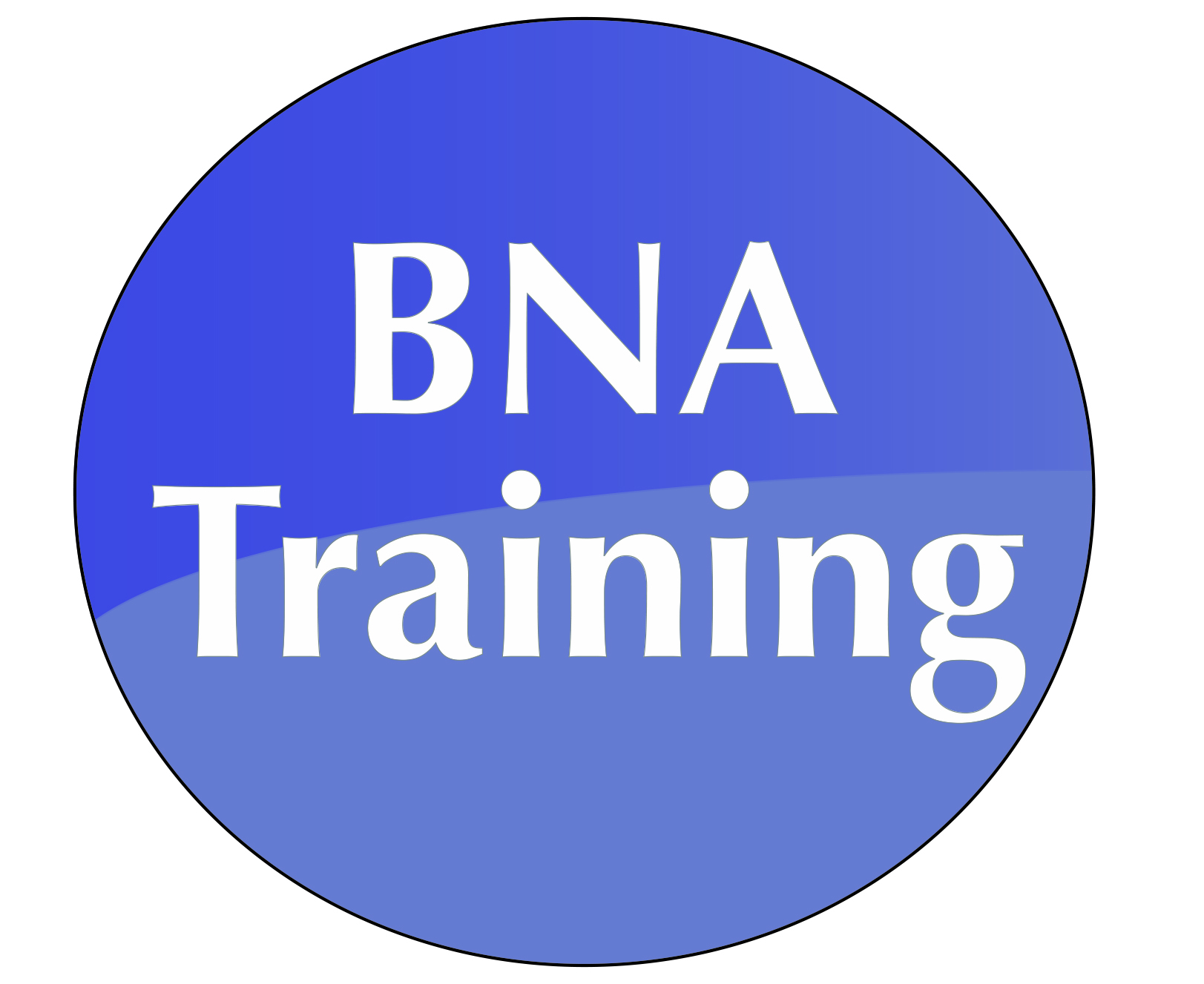 Cna School Chicago Illinois Cna Classes Cna Certification Training