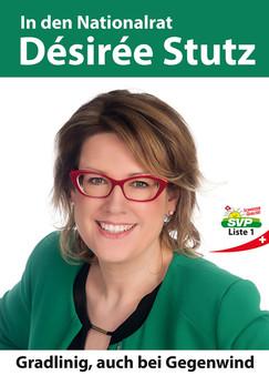 Wahlplakat, div. Werbemittel