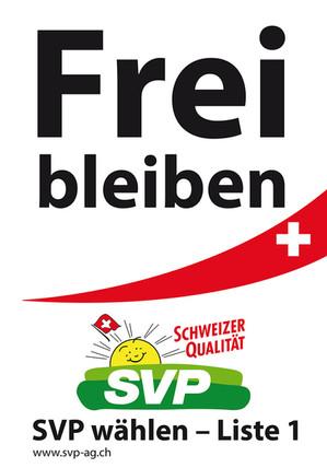 Wahlleitung SVP Aargau, Realisation Basiwerbung