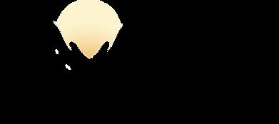 Exalt Logo - Large.png