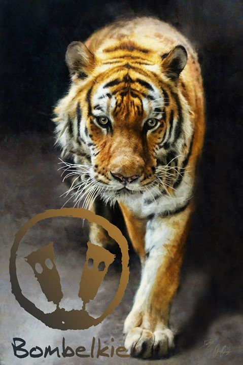 Facebook - Primal Instincts  Tiger, symbolizes primal instincts, unpredictabilit