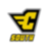 C_SOUTH-Logo(Fv)GoldSouth.png