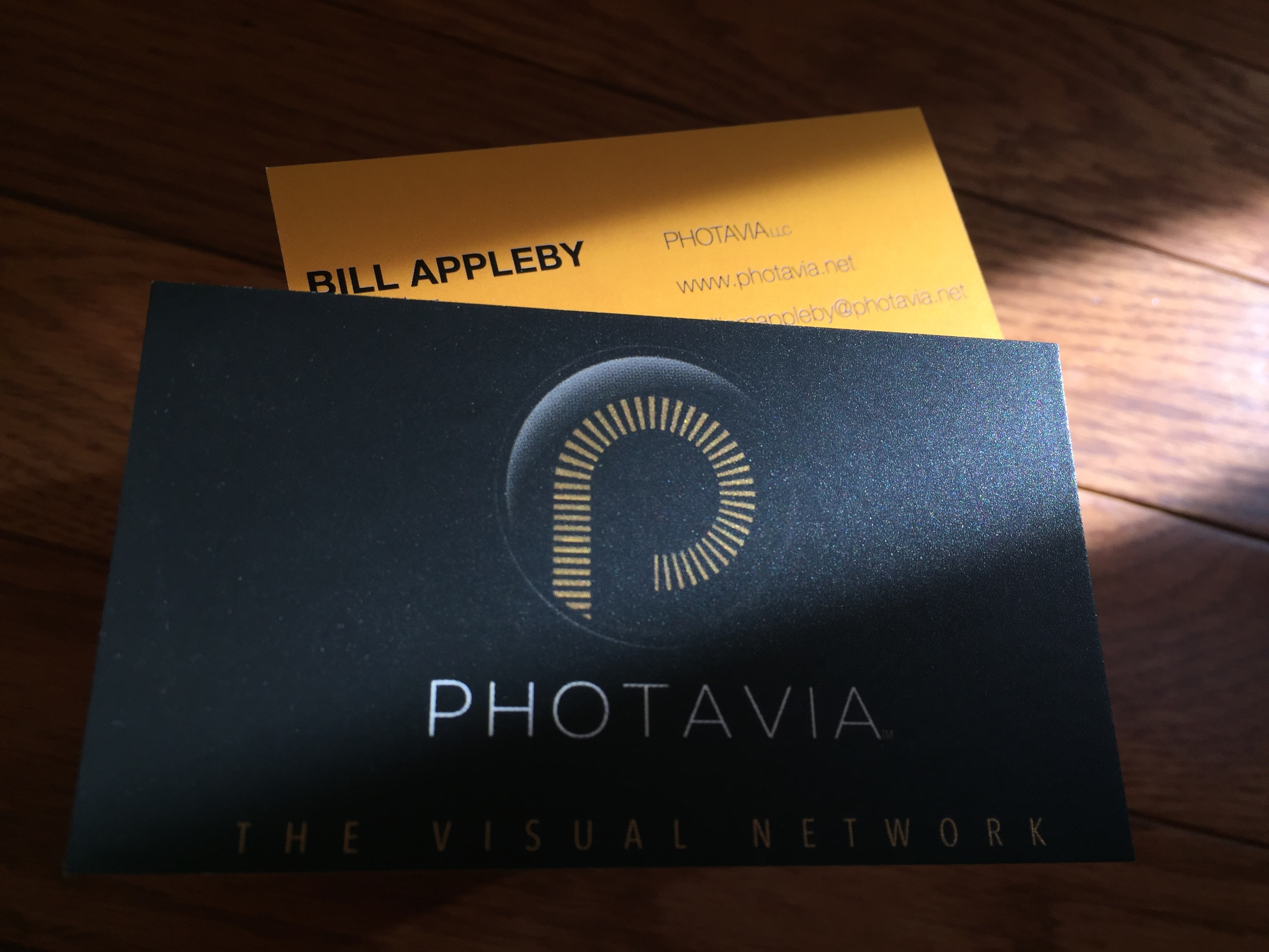 Photavia Brand and Business Card