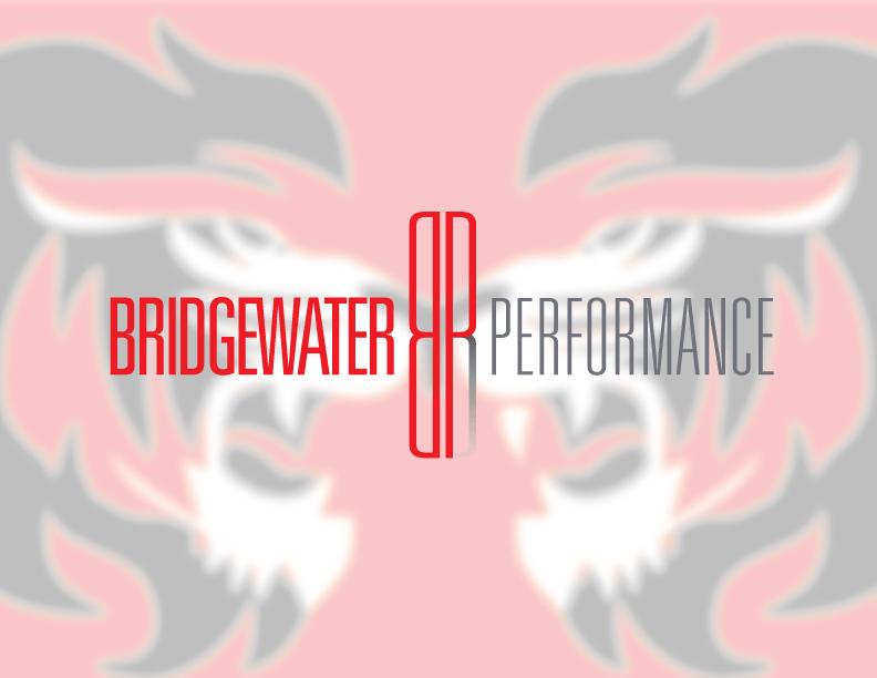 Bridgewater-Performance(fin).png