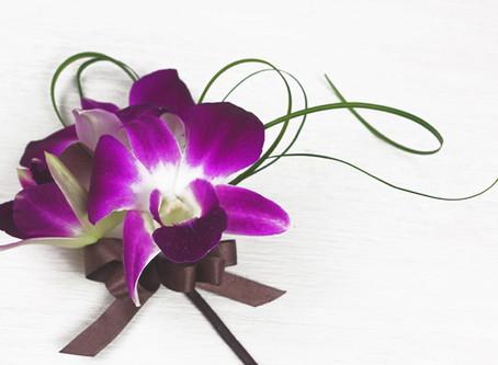 8月の花「デンファレ」のワイヤリング