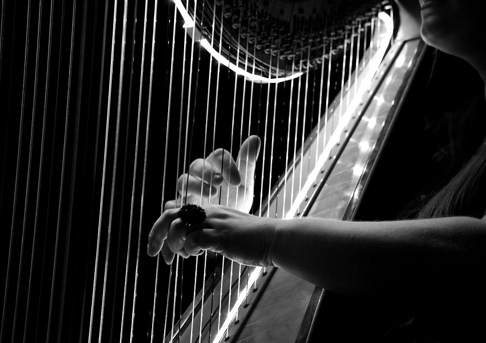 Person playing the harp