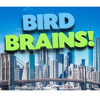 Bird Brains! SP.png