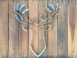 Deer | Elk | Moose