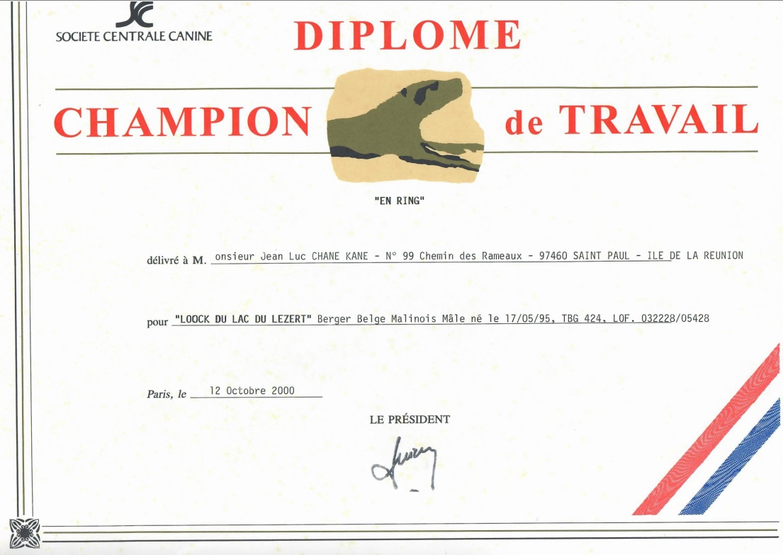 Diplôme de champion de travail 2000
