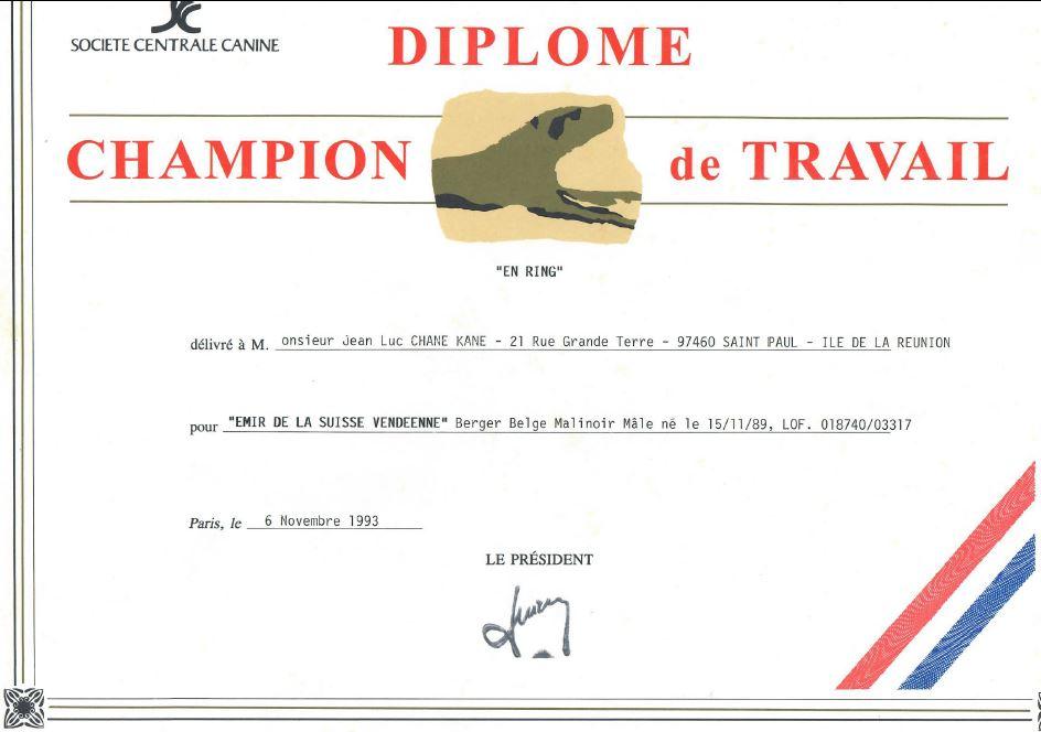 Diplôme de champion de travail 1993
