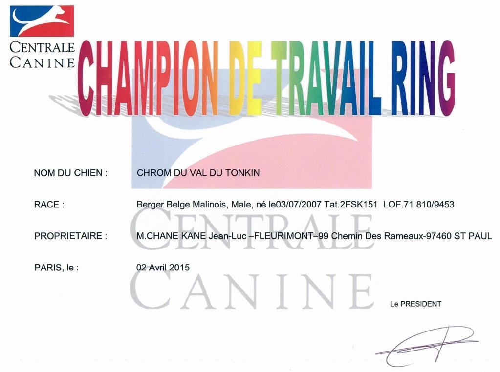 Champion de travail Ring
