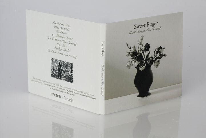 A sample of CD Design