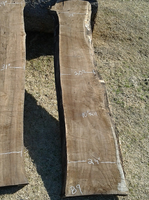 "Black Walnut (B9) 19""-24"" Wide x 10' Tall x 3 "" Thick"
