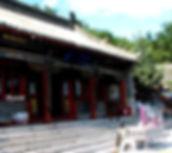 Curso chino en zaragoza