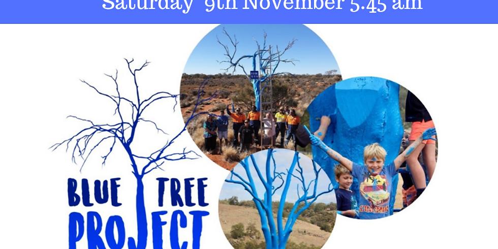 Broome Blue Tree